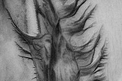 piaskowa abstrakcja